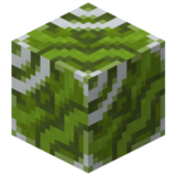 Grüne glasierte Keramik.png