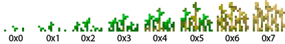 Weizenpflanze Wachstumsstufen.png