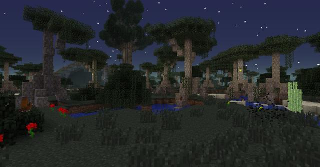 Ein Mangrovensumpf