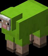 Hellgrünes Schaf.png