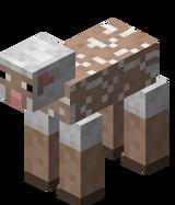 Weißes Schaf Geschoren.png