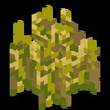 Weizenpflanzen7.png
