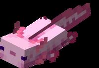 Pinker Axolotl schwimmt.png