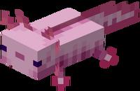 Pinker Axolotl.png