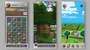 Gameplay (Earth).jpg