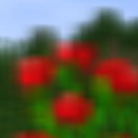 Shader-Blur-Detail.png