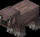 Gesprenkeltes Schwein (Earth).png