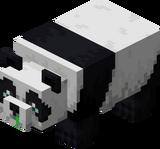 Panda schwach.png