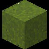 Grüner Trockenbeton.png
