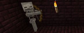 Banner-12w36a.png