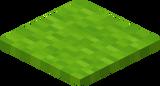 Hellgrüner Teppich.png