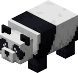 Panda besorgt.png