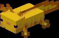 Goldener Axolotl.png
