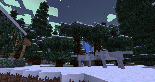 Ein verschneiter Wald