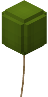 Grüner Ballon.png