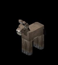 Eselfohlen.png
