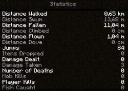 MineCraftStatistics1.jpg