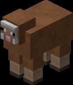 Mouton marron.png