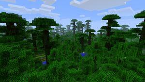 Junglelik.jpg