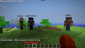 EarlySMP.png
