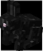 Lapin noir.png