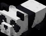 Bébé panda paresseux.png