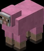 Mouton rose.png
