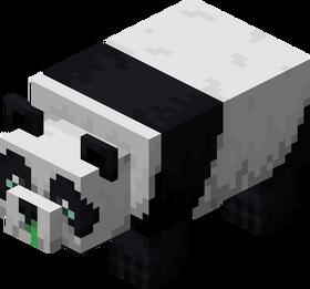 Panda faible.png