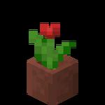 Tulipe rouge en pot.png