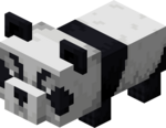Bébé panda agressif.png