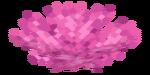 Gorgone de corail cerveau.png