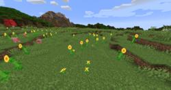 Plaines de tournesols.png