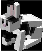 Lapin noir et blanc.png