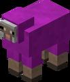 Mouton magenta.png