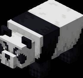Panda agressif.png