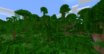 Collines jungle.png