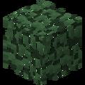 Leaves (data value 3, 7, 11, 15) JE1.png