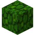 Jungle Leaves (fast) JE1 BE1.png