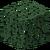 Spruce Leaves JE2.png