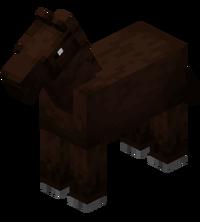 Darkbrown Horse.png