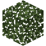 Birch Leaves BE4.png