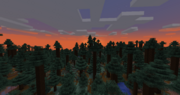 A picture of a sunset over a redwood forest in modern minecraft.