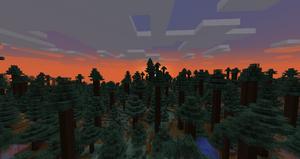 Redwood Sunset.png
