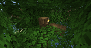BG - In a Tree.png