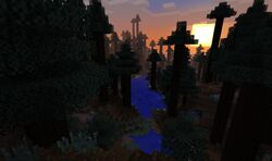 RedwoodBiome.jpg