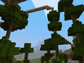 User-Jack678-plank-long-bridge-forest.png