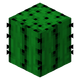 Cactus BE3.png