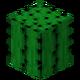 Cactus BE3.png