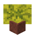 Potted Melon.png