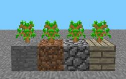 Rd-161348 blocks.jpg